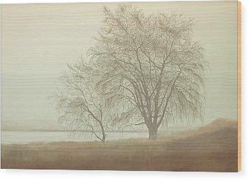 Kah Tai Fog Wood Print