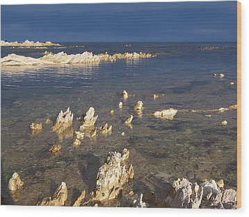 Wood Print featuring the photograph Kaikoura Coast by Peter Mooyman
