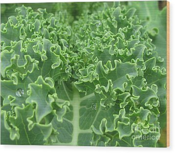 Kale Wood Print by Tina Marie