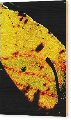 Kaleidoscope Wood Print by Ken Young