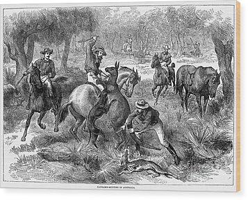 Kangaroo Hunting, 1876 Wood Print by Granger
