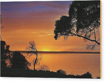 Kangaroo Island - Sunrise Wood Print by David Barringhaus