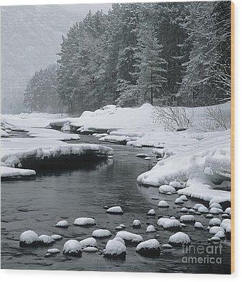 Katun River Wood Print by Elena Filatova