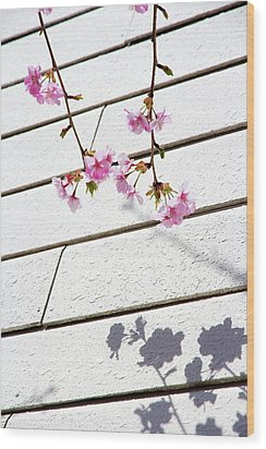 Kawadu Sakura Wood Print by Privacy Policy