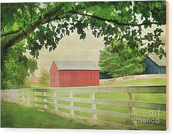 Kentucky Country Side Wood Print by Darren Fisher