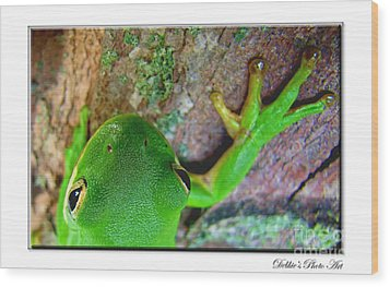 Wood Print featuring the photograph Kermit's Kuzin by Debbie Portwood