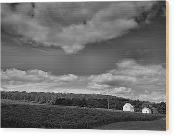 Keuka Landscape Vi Wood Print by Steven Ainsworth