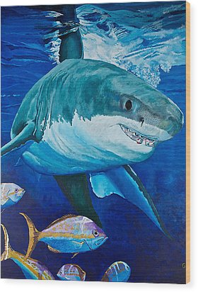Kids Love Sharks Wood Print by Terry Gill