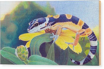 Wood Print featuring the drawing Kiiro The Gecko by Ana Tirolese