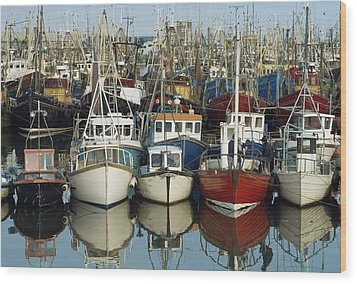 Kilkeel, Co Down, Ireland Rows Of Boats Wood Print by The Irish Image Collection