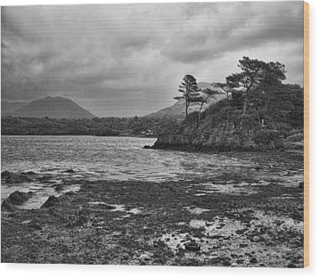 Wood Print featuring the photograph Killarney Lake by Hugh Smith