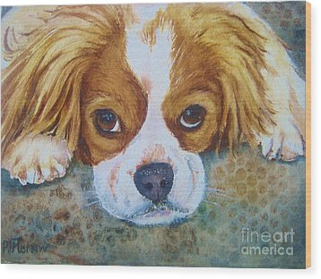 King Charles Spaniel Wood Print by Patricia Pushaw