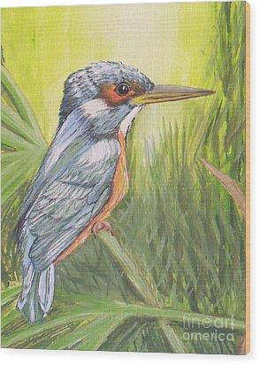 Kingfisher Wood Print by Debra Piro