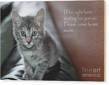 Kitten Greeting Card Wood Print by Micah May