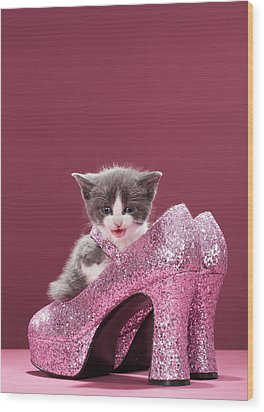 Kitten Sitting In Glitter Shoes Wood Print by Martin Poole