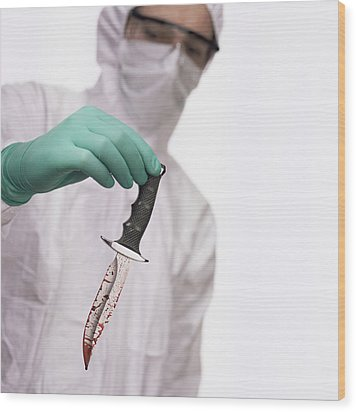 Knife Found At A Crime Scene Wood Print by Kevin Curtis