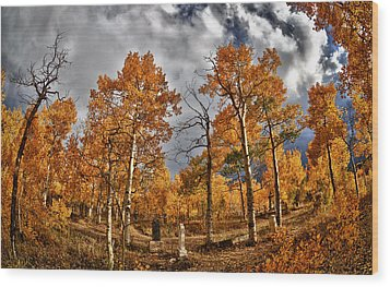 Wood Print featuring the photograph Knights Of Pythias Autumn by Kevin Munro