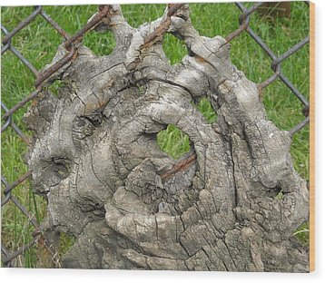 Wood Print featuring the photograph Knot In Fence 1 by Christophe Ennis