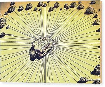 Knowledge Without Wisdom IIi Wood Print by Paulo Zerbato