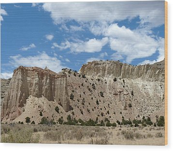 Kodachrome Basin State Park II Wood Print by Terry Eve Tanner