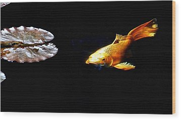 Koi And Lillies Wood Print by Don Mann