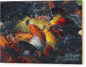 Wood Print featuring the photograph Koi Fish by Eva Kaufman