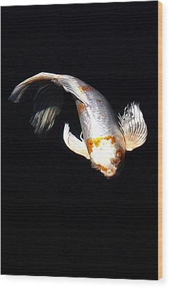Koi From Above Wood Print by Don Mann