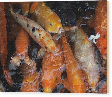 Wood Print featuring the photograph Koi In Pond by Peter Mooyman