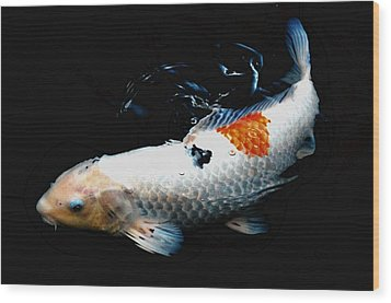 Koi Rising Wood Print by Don Mann