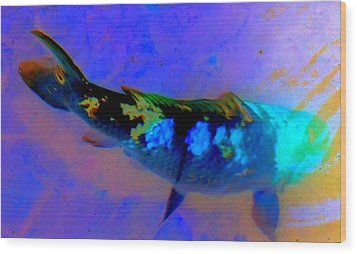 Koi Story One A Wood Print by Randall Weidner