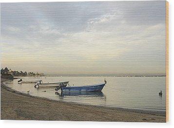 La Paz Waterfront Wood Print