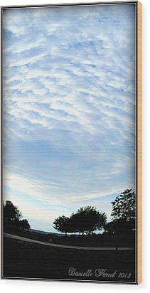 Wood Print featuring the photograph La Terre Est Ronde by Danielle  Parent
