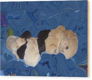 Lab Pups 1 Wood Print by Aimee L Maher Photography and Art Visit ALMGallerydotcom