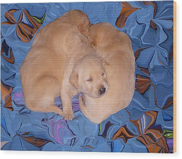Lab Pups 2 Wood Print by Aimee L Maher Photography and Art Visit ALMGallerydotcom