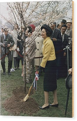 Lady Bird Johnson Planting A Tree Wood Print by Everett