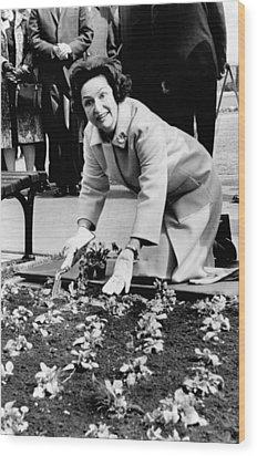Lady Bird Johnson Planting Pansies Wood Print by Everett