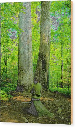 Lady In The Woods Wood Print by David Lee Thompson