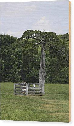 Lafayette Meeks Cemetery Appomattox Virginia Wood Print by Teresa Mucha