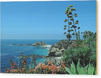 Wood Print featuring the photograph Laguna Beach by Renee Hardison