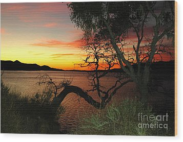 Wood Print featuring the photograph Lake Cachuma Evening by Johanne Peale