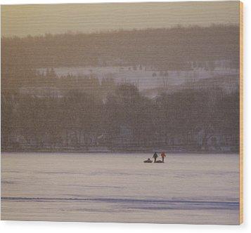 Lake Crossing  February 2010 Wood Print by Joseph Duba