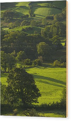 Lake District National Park, Cumbria Wood Print by Axiom Photographic