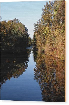 Lake Drummond Canal Wood Print by Feva  Fotos
