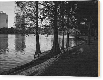 Lake Eola Water Edge Wood Print by Lynn Palmer