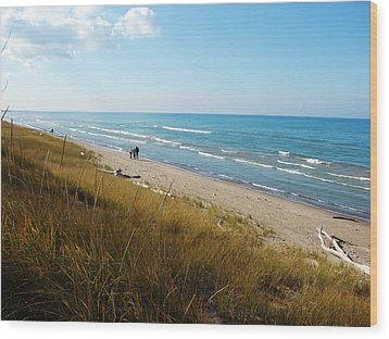 Wood Print featuring the mixed media Lake Huron Shoreline by Bruce Ritchie