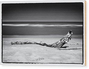 Lake Huron Wood Print by Tanya Harrison