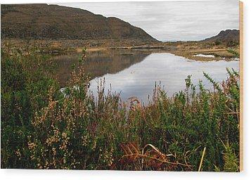 Wood Print featuring the photograph Lake In Killarney by Barbara Walsh