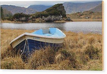 Wood Print featuring the photograph Lake In Killarney National Park by Barbara Walsh