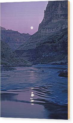 Lake Light On Colorado River,grand Wood Print by David Edwards