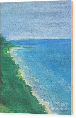 Lake Michigan Wood Print by Lisa Dionne